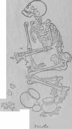 Погребение Балановского могильника, по материалу О. Н. Бадера, стр. 11.