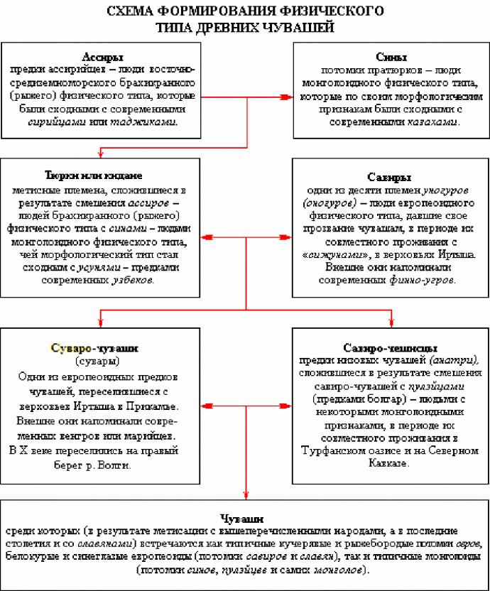 Схема формирования физического типа древних чувашей